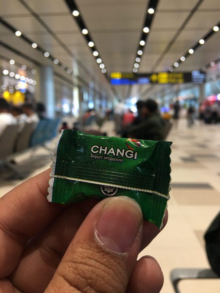 Changi International Airport, Singapura